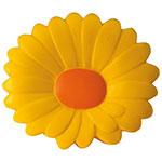 Chrysanthème anti-stress