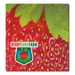 "1/16"" Fabric Surface Mouse Pad (7-1/2"" x 8"")"