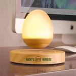 Haut-parleur sans fil Egg Drop
