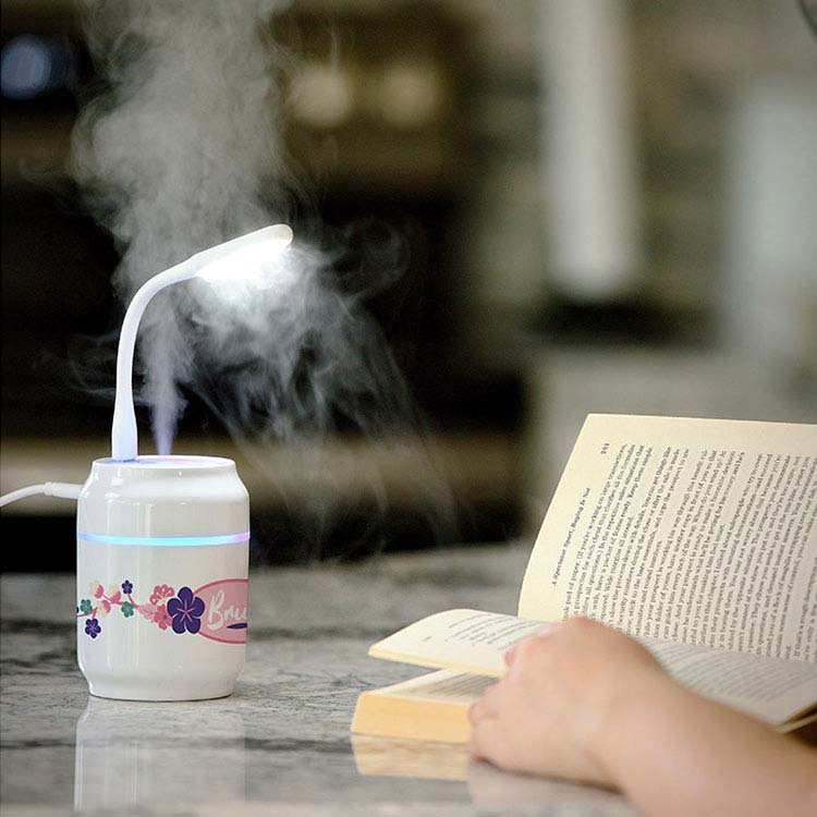 Mini humidificateur Brume #2